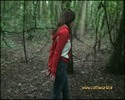 Thumbnail The Forrest (video)