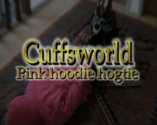Product picture Pink Hoodie Hogtie